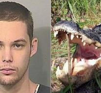 Alligator eats burglar