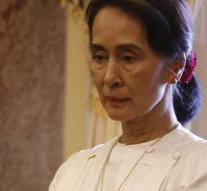 Amnesty deprives Aung San Suu Kyi high price