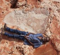 Biggest dinosaur paw print discovered in Australia