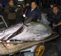 Bluefin tuna auctioned for 2.7 million euros