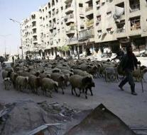 'Catastrophic' situation in rebel city of Syria