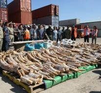 China bans trade in ivory