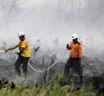 Country burning in Indonesia may be prohibited