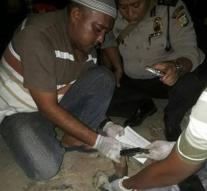 Crowd in Jakarta burns thief
