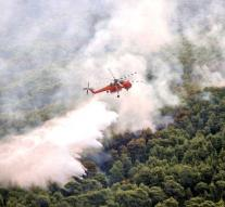 Deaths of Greek forest fires now 93