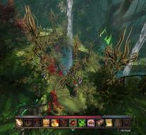 Divinity Original Sin II: Definitive Edition