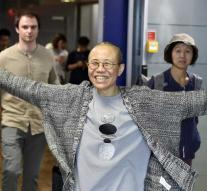 Female Chinese dissident released after eight years
