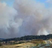 Forest fire ravages south island New Zealand