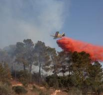 Forest fires in Israel over
