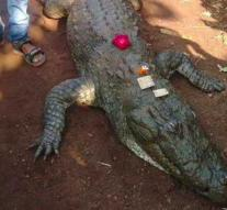 Indian village mourns vegetarian crocodile