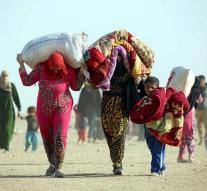 Iraq has 12,000 refugees in Mosul