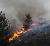 Israel asks for help for firefighting