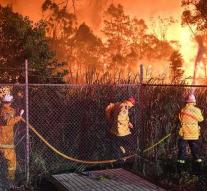 Large forest fire on the outskirts of Sydney