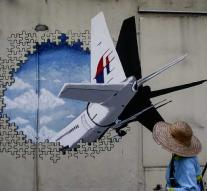 Malaysia is considering halting MH370 search