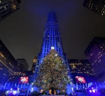 Man holding tank with huge Christmas tree New York
