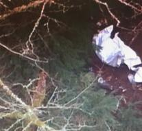 Plane plunges into ravine US: four dead