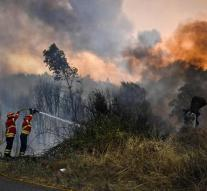 Portuguese villages cleared due to forest fires