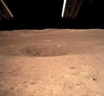 'Potatoes and caterpillars on the moon is not a stunt'