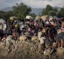 Preliminary investigation into violence against Rohingya