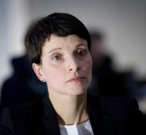 Right-wing populist AfD: Germany no longer safe