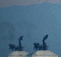 Starlings Plague affects Rome