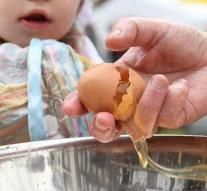 Suspected egg scandal remain stuck