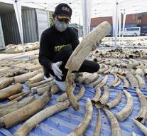 Thai Customs interceptes the charge of ivory