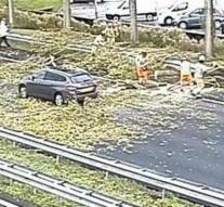 Tree falls on driving car, highway A13 close