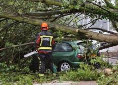 Woman dead by tree on car in Belgium